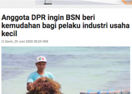 Anggota DPR ingin BSN beri kemudahan bagi pelaku industri usaha kecil