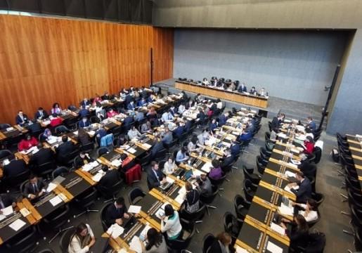 Indonesia Mengangkat Concern Regulasi Anggota WTO terkait Produk kayu manis, Pulp dan Kertas