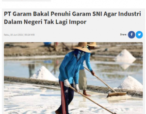 PT Garam Bakal Penuhi Garam SNI Agar Industri Dalam Negeri Tak Lagi Impor
