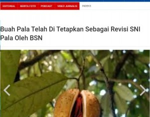 Buah Pala Telah Di Tetapkan Sebagai Revisi SNI Pala Oleh BSN