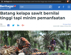 Batang kelapa sawit bernilai tinggi tapi minim pemanfaatan