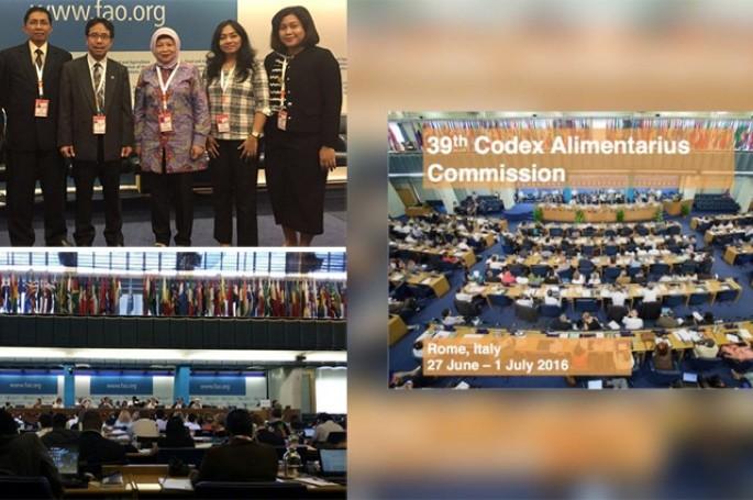 Sidang ke - 39 Codex Alimentarius Commission (CAC), Roma.